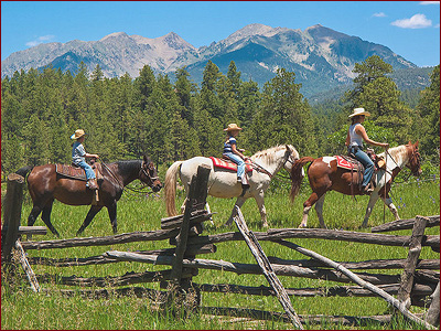 Enjoy a day on horseback, riding the trails of the Carson National Forest in Red River, NM. Enjoy the stunning Rocky Mountain vistas, alpine meadows full of wildflowers, birds and wildlife on your guided horseback trail ride through Bobcat Pass